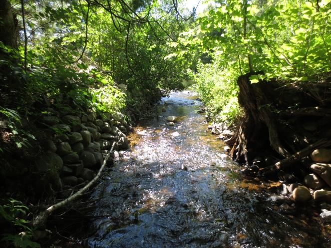 Riverfalls ablog6